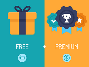 Freemium is a free item that offers premium options for a fee.